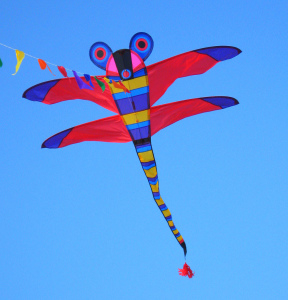 Fly a kite to play with the wind.